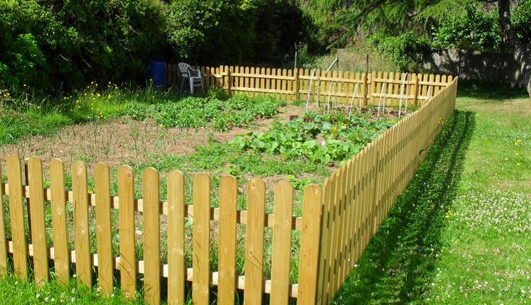 Jardins partagés : ils ont à nouveau le vent en poupe !
